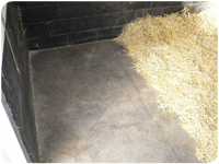 The Stable Mat Mats Matting Equestrian Stable Stall